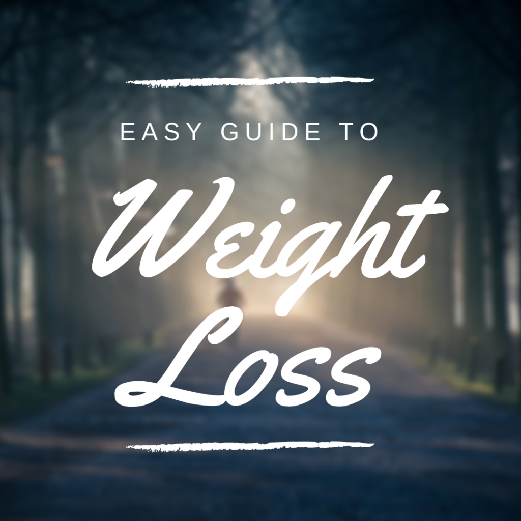 easy guide to weight loss